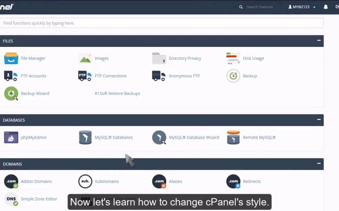 cPanel – Changing the main theme
