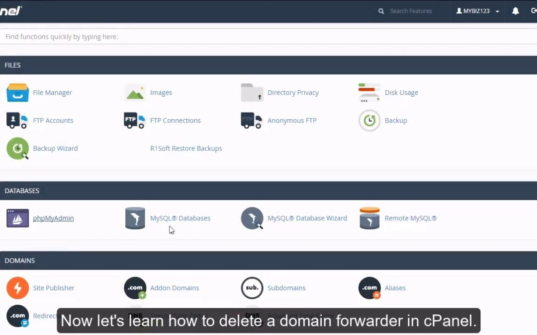 cPanel Email – How to Delete a Domain Forwarder